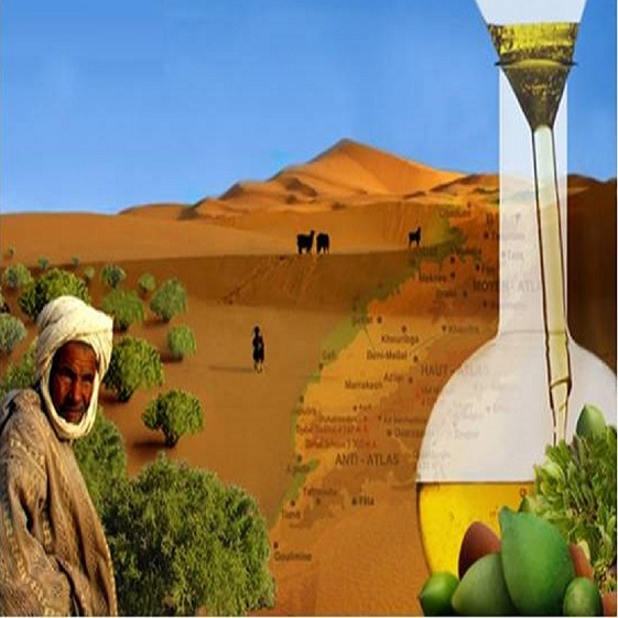 Themed Morocco Tours Excel Travel Morocco Argan-Tour