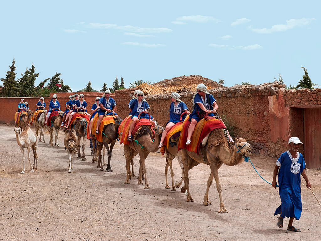 morocco day tour camels riding
